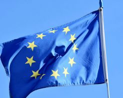 Förhandsröstningen i EU-valet startar den 15 maj